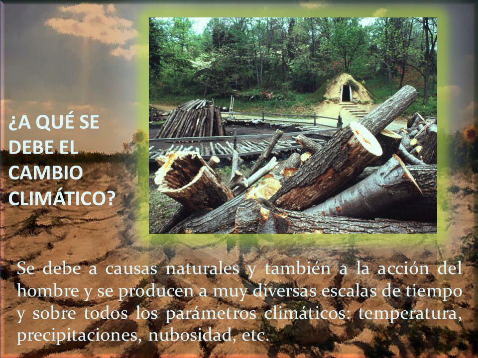 ¿A QUÉ SE DEBE EL CAMBIO CLIMÁTICO