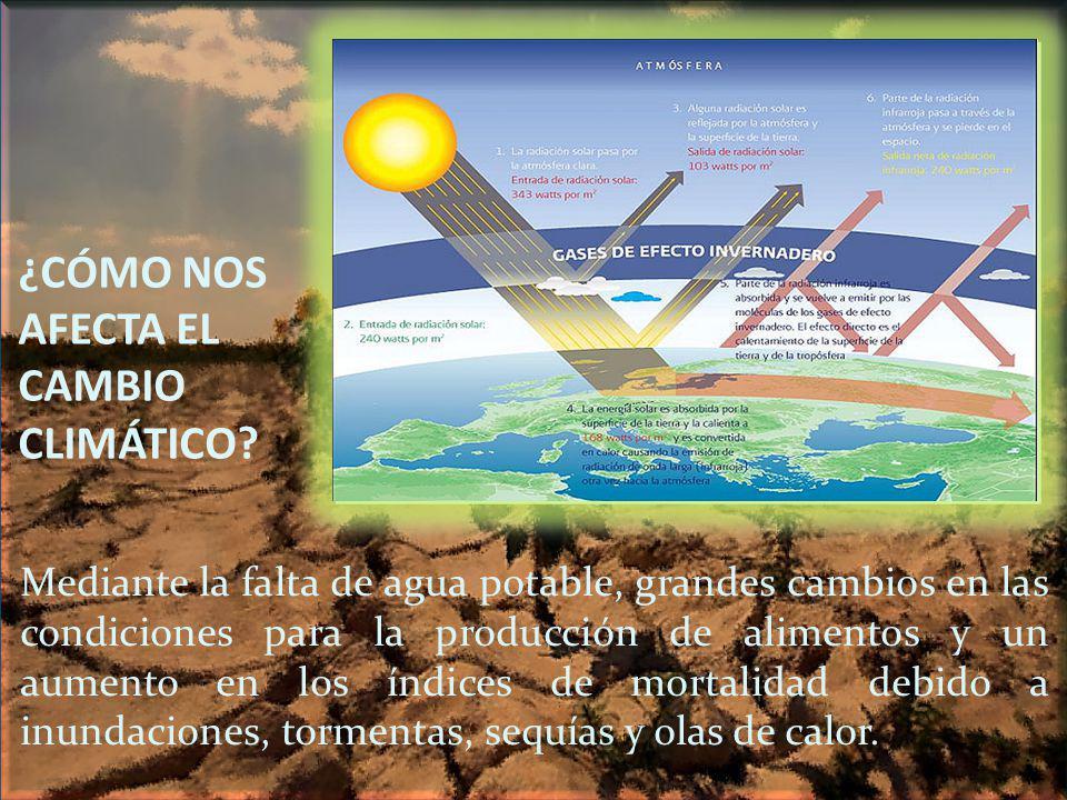 ¿CÓMO NOS AFECTA EL CAMBIO CLIMÁTICO