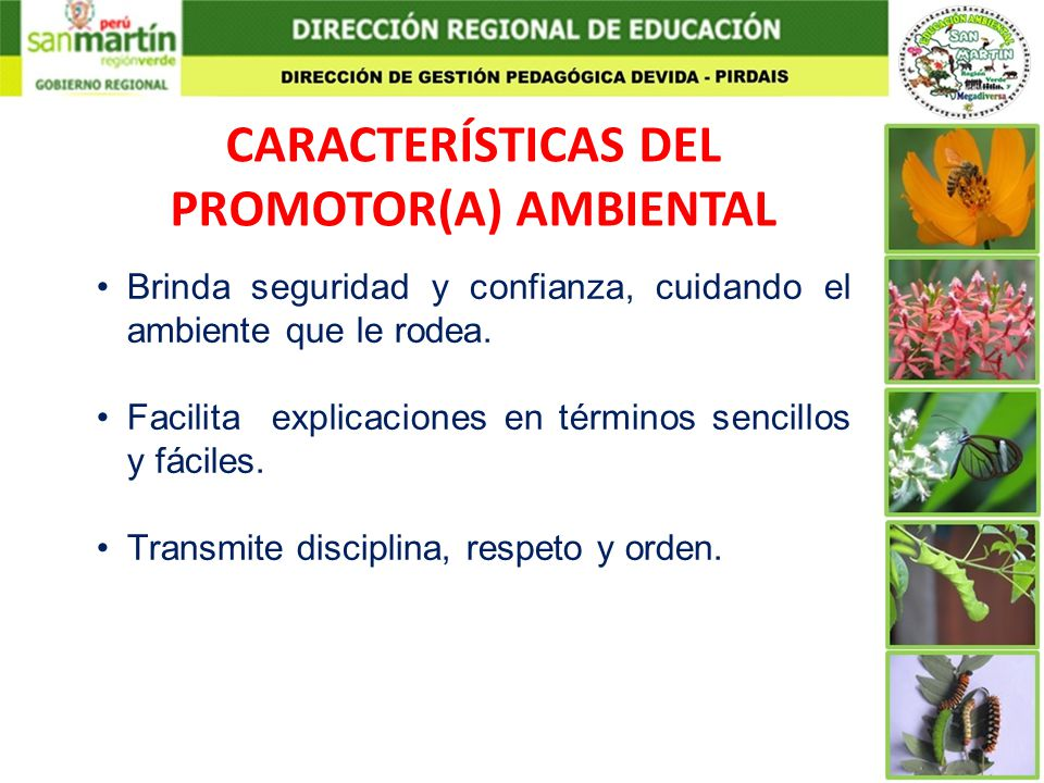 CARACTERÍSTICAS DEL PROMOTOR(A) AMBIENTAL