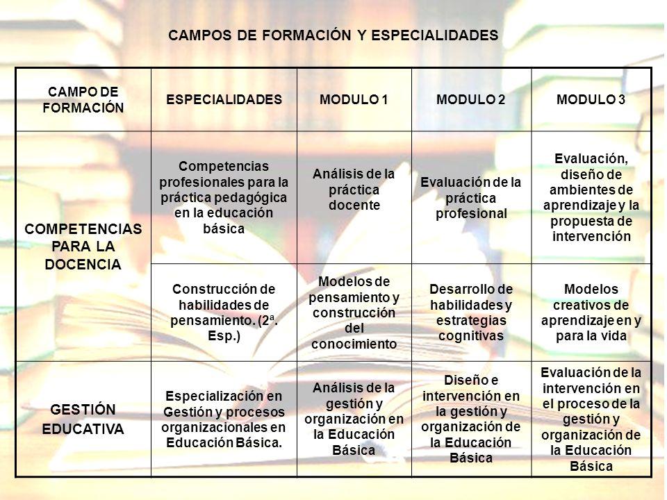CAMPOS DE FORMACIÓN Y ESPECIALIDADES COMPETENCIAS PARA LA DOCENCIA