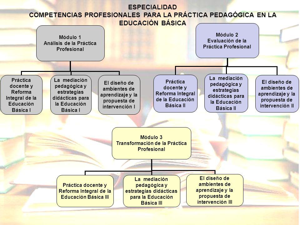 ESPECIALIDAD COMPETENCIAS PROFESIONALES PARA LA PRÁCTICA PEDAGÓGICA EN LA EDUCACIÓN BÁSICA