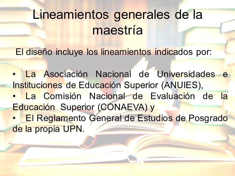Lineamientos generales de la maestría