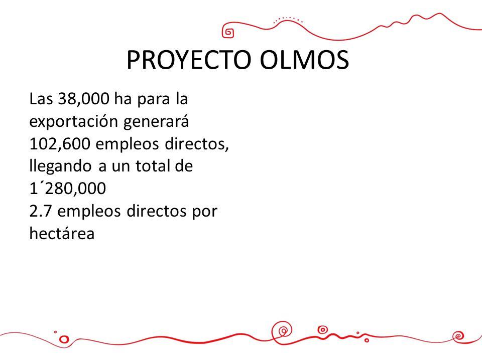 PROYECTO OLMOS Las 38,000 ha para la exportación generará 102,600 empleos directos, llegando a un total de 1´280,000.