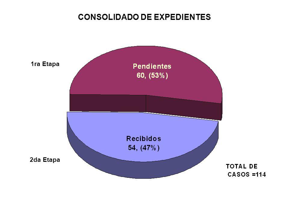 CONSOLIDADO DE EXPEDIENTES
