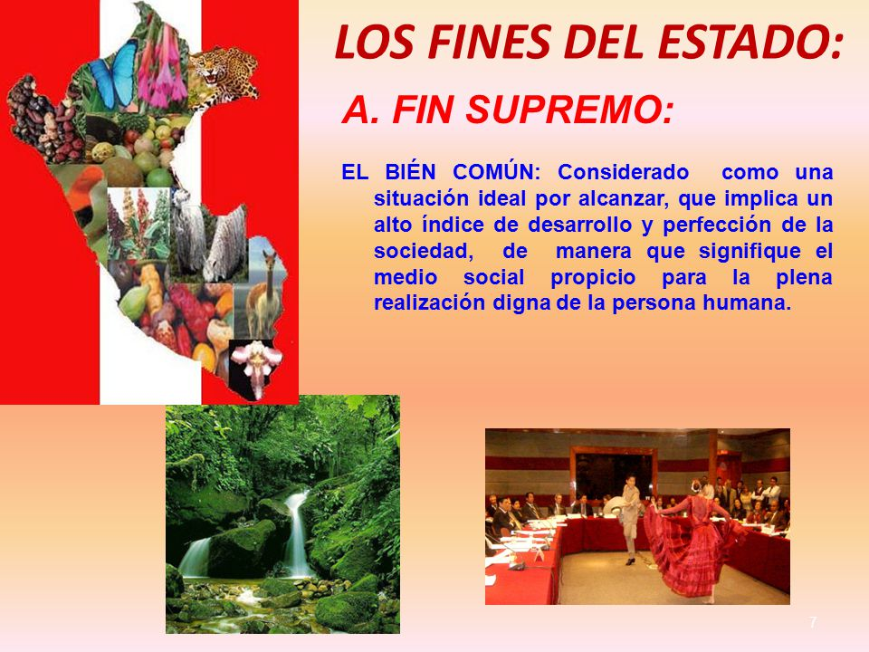 LOS FINES DEL ESTADO: FIN SUPREMO: