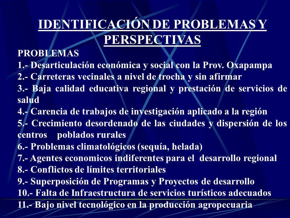 IDENTIFICACIÓN DE PROBLEMAS Y PERSPECTIVAS