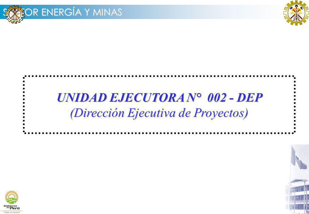 UNIDAD EJECUTORA N° 002 - DEP (Dirección Ejecutiva de Proyectos)