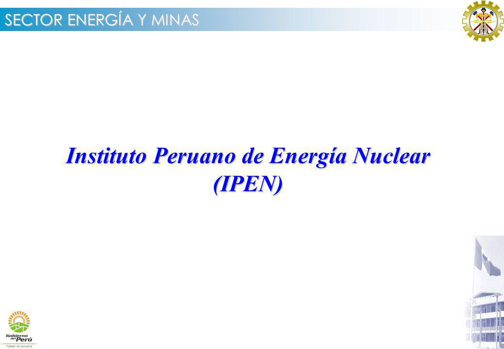 Instituto Peruano de Energía Nuclear (IPEN)
