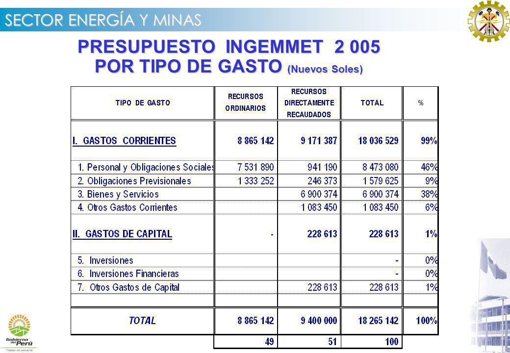 PRESUPUESTO INGEMMET 2 005 POR TIPO DE GASTO (Nuevos Soles)