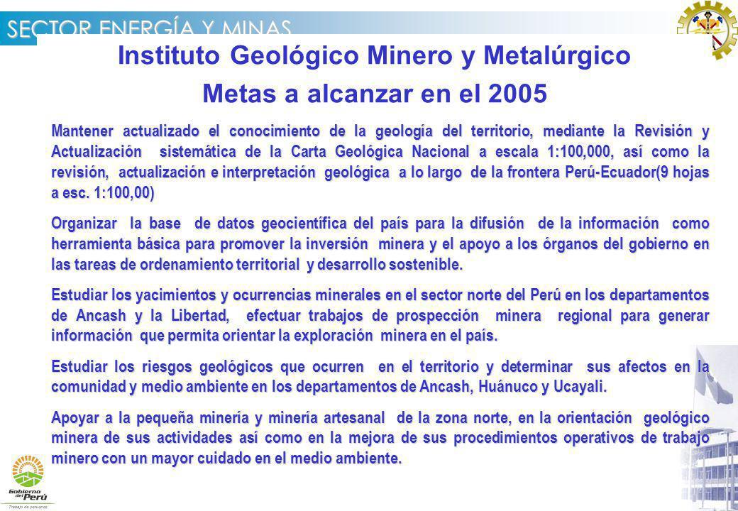 Instituto Geológico Minero y Metalúrgico