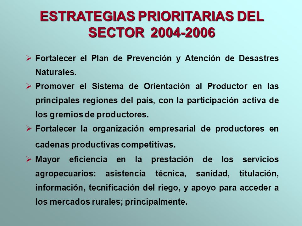 ESTRATEGIAS PRIORITARIAS DEL SECTOR 2004-2006