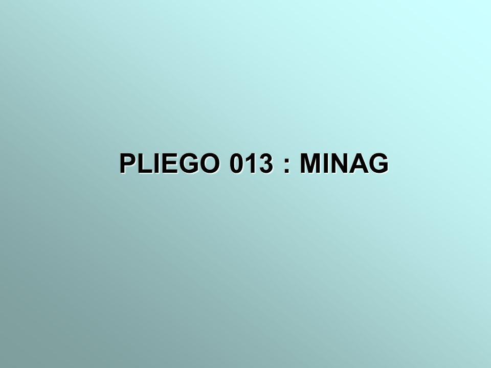 PLIEGO 013 : MINAG