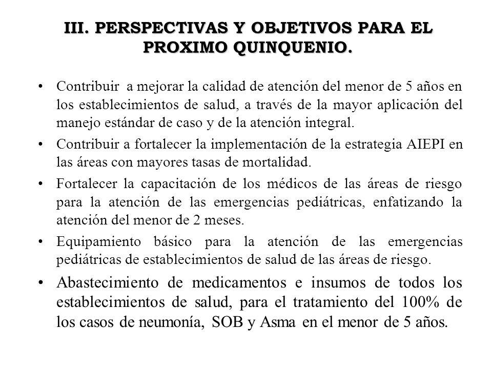 III. PERSPECTIVAS Y OBJETIVOS PARA EL PROXIMO QUINQUENIO.