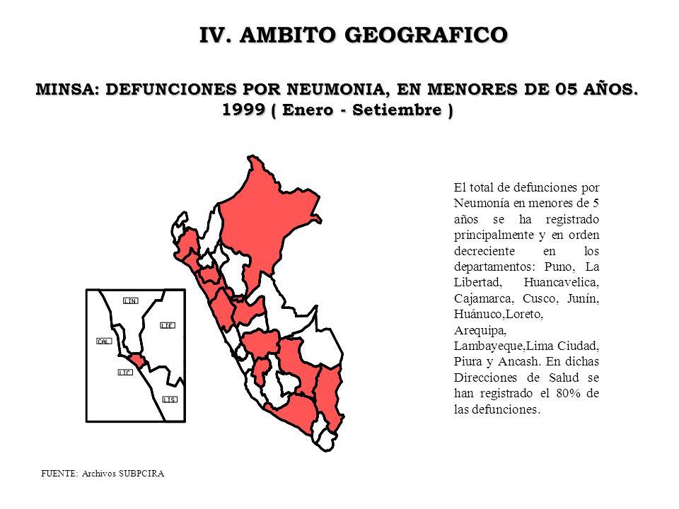 IV. AMBITO GEOGRAFICO MINSA: DEFUNCIONES POR NEUMONIA, EN MENORES DE 05 AÑOS. 1999 ( Enero - Setiembre )