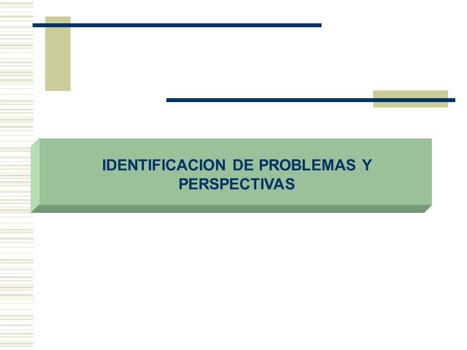 IDENTIFICACION DE PROBLEMAS Y PERSPECTIVAS