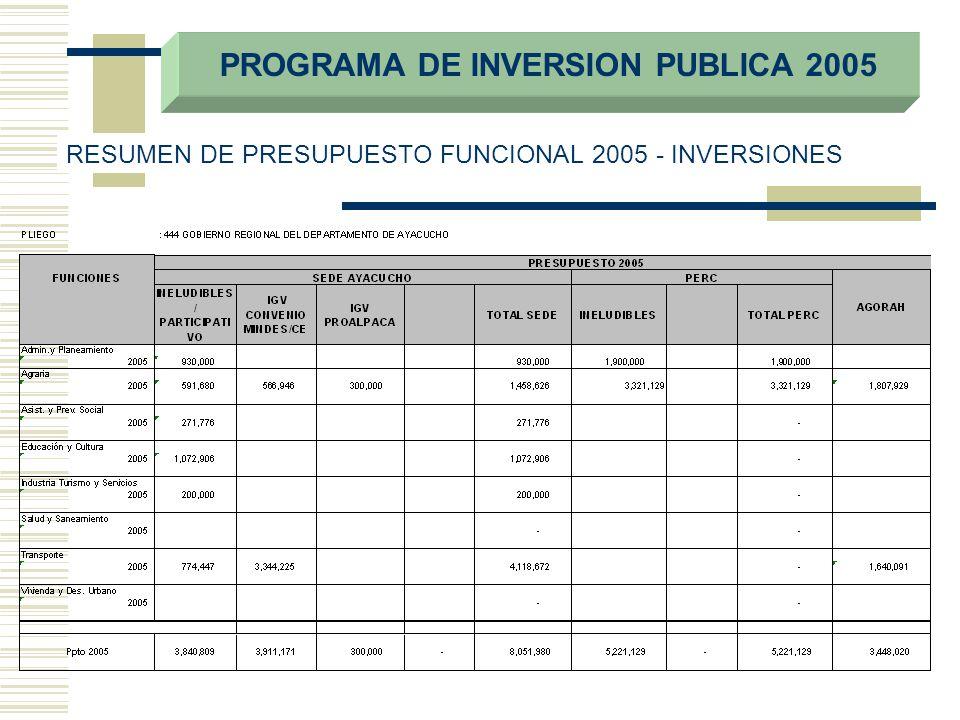 PROGRAMA DE INVERSION PUBLICA 2005