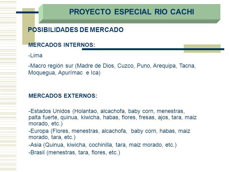 POSIBILIDADES DE MERCADO