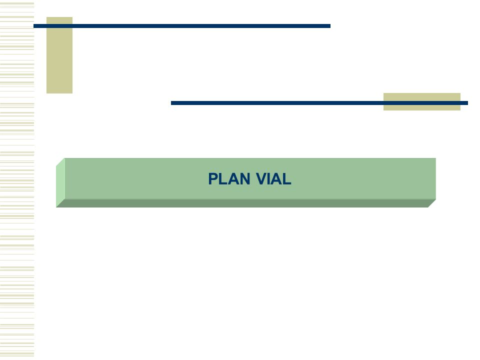 PLAN VIAL