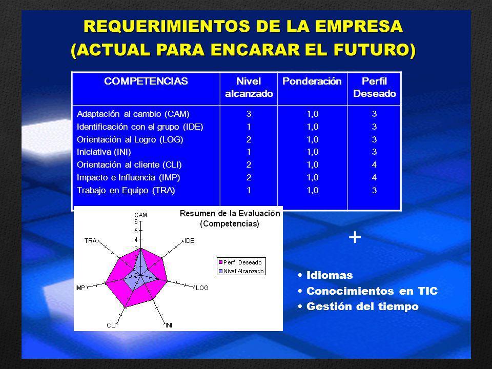 REQUERIMIENTOS DE LA EMPRESA (ACTUAL PARA ENCARAR EL FUTURO)