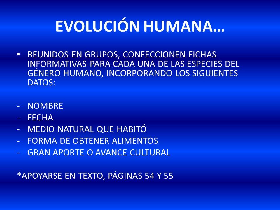 EVOLUCIÓN HUMANA…