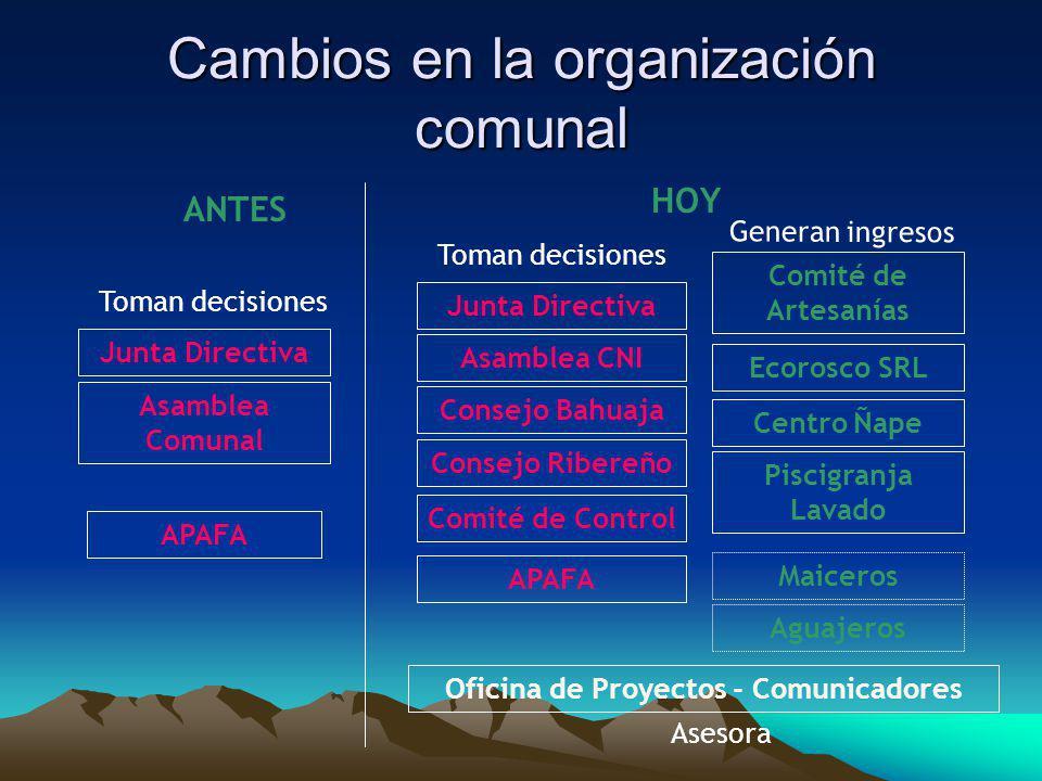 Cambios en la organización comunal