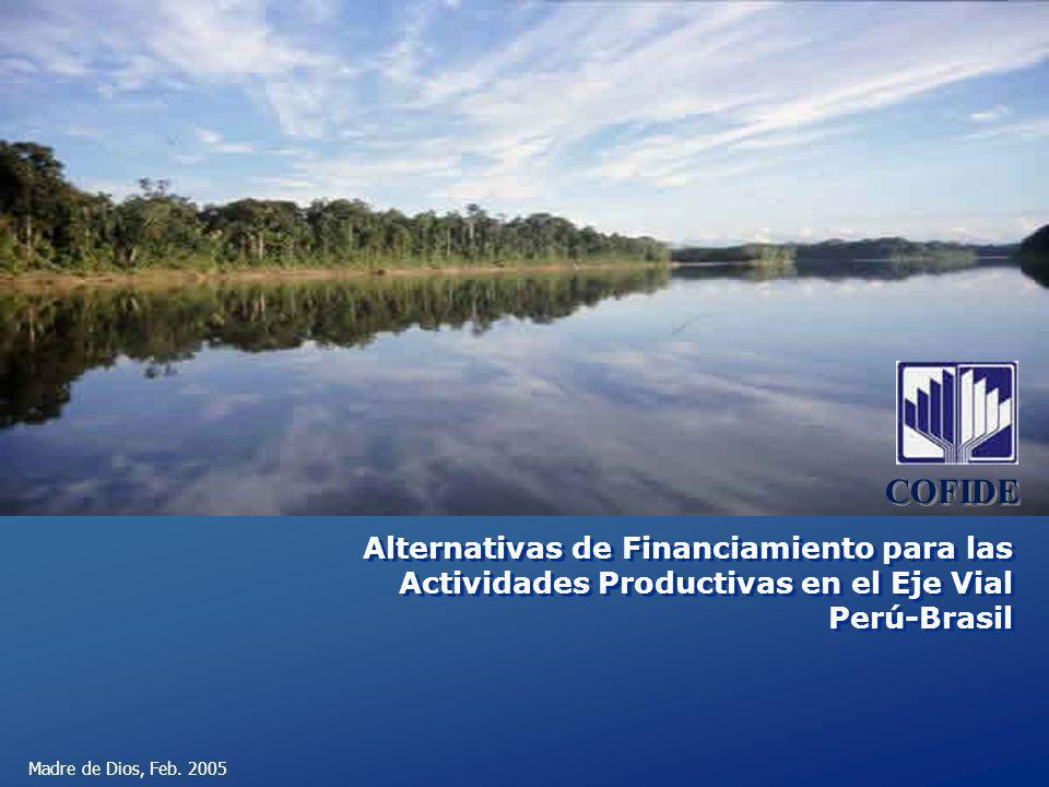 COFIDE Alternativas de Financiamiento para las Actividades Productivas en el Eje Vial Perú-Brasil.
