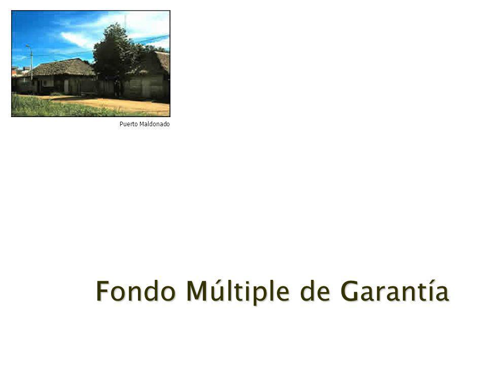 Fondo Múltiple de Garantía