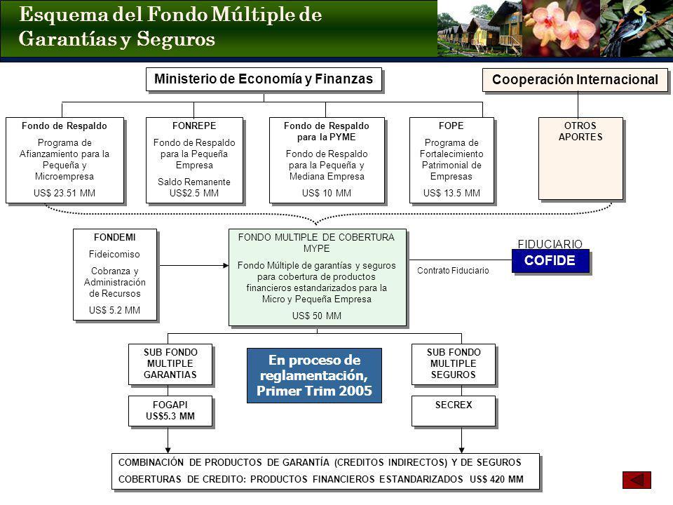Esquema del Fondo Múltiple de Garantías y Seguros