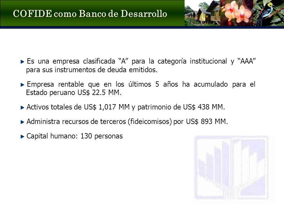 COFIDE como Banco de Desarrollo