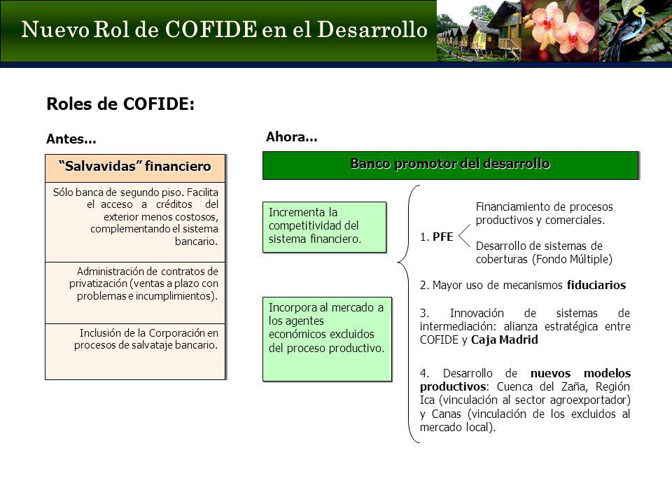 Nuevo Rol de COFIDE en el Desarrollo
