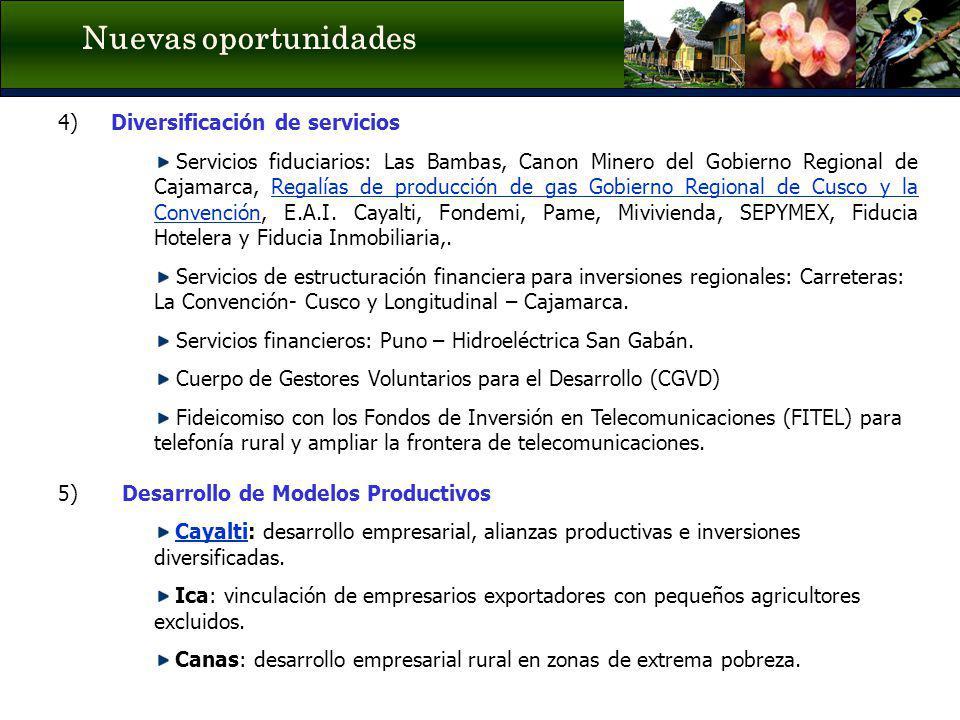 Nuevas oportunidades 4) Diversificación de servicios