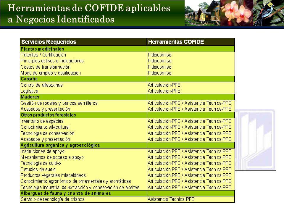 Herramientas de COFIDE aplicables a Negocios Identificados