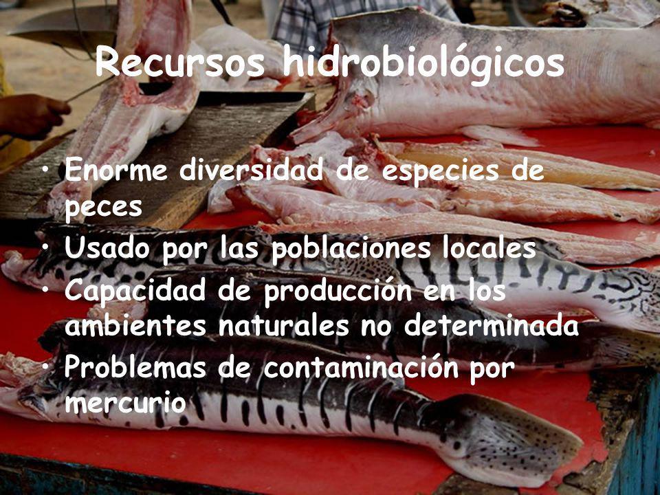 Recursos hidrobiológicos
