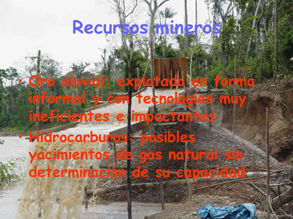 Recursos mineros Oro aluvial: explotado en forma informal y con tecnologías muy ineficientes e impactantes.