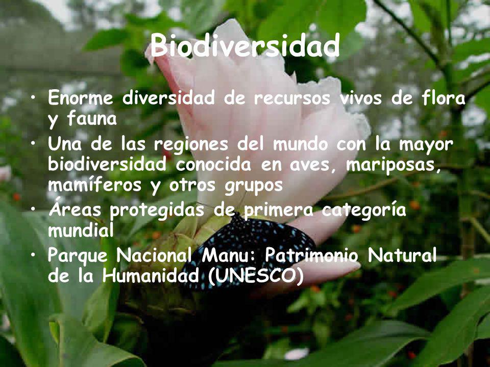 Biodiversidad Enorme diversidad de recursos vivos de flora y fauna