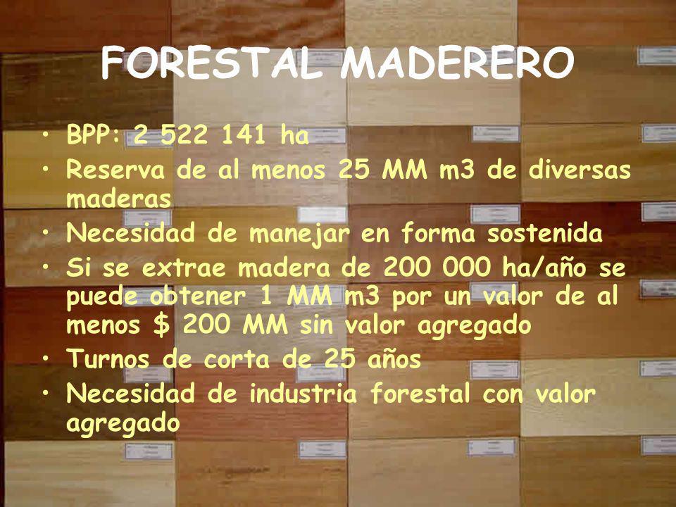 FORESTAL MADERERO BPP: 2 522 141 ha