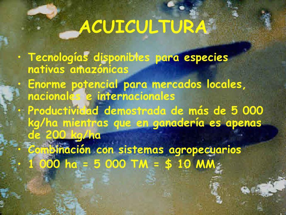 ACUICULTURA Tecnologías disponibles para especies nativas amazónicas
