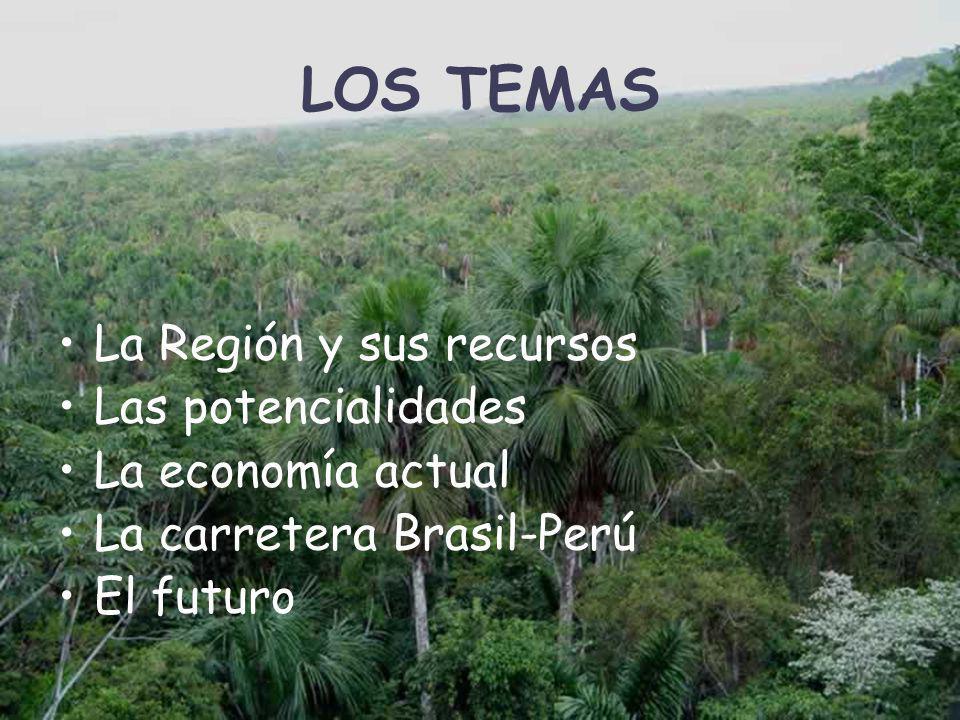 LOS TEMAS La Región y sus recursos Las potencialidades