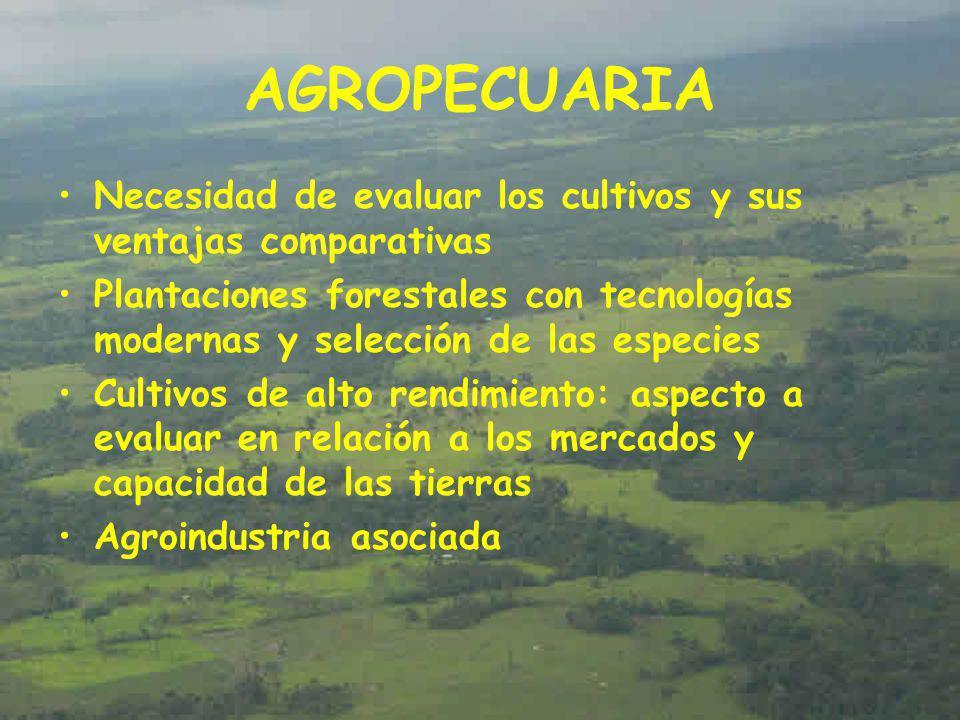AGROPECUARIA Necesidad de evaluar los cultivos y sus ventajas comparativas.