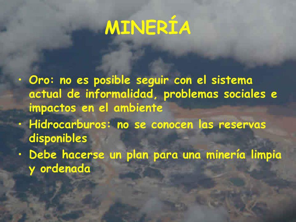 MINERÍA Oro: no es posible seguir con el sistema actual de informalidad, problemas sociales e impactos en el ambiente.
