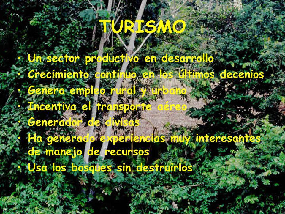 TURISMO Un sector productivo en desarrollo