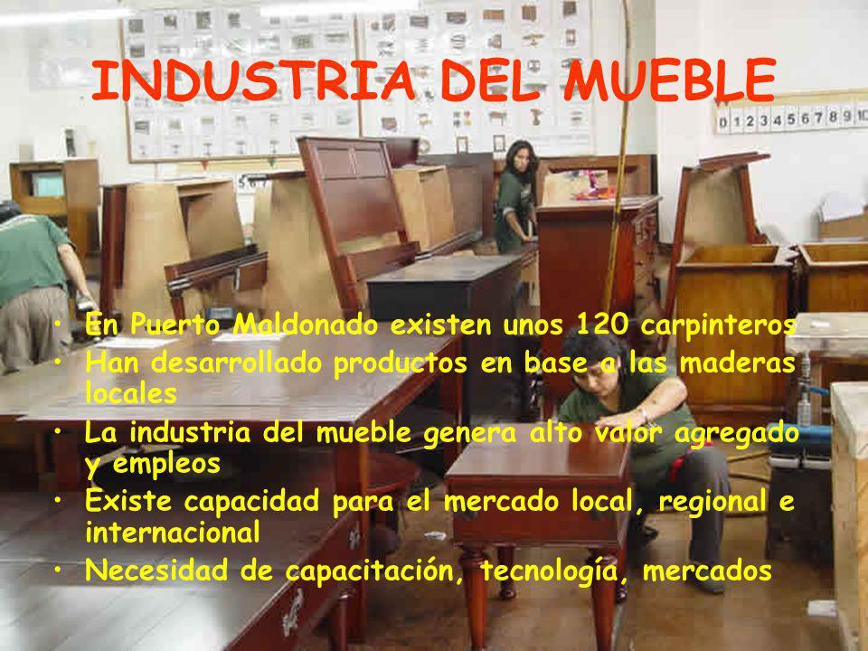 INDUSTRIA DEL MUEBLE En Puerto Maldonado existen unos 120 carpinteros