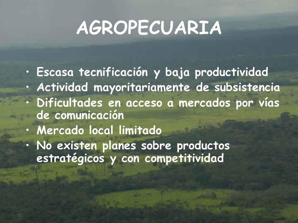 AGROPECUARIA Escasa tecnificación y baja productividad