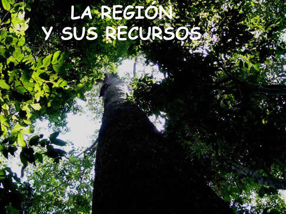 LA REGIÓN Y SUS RECURSOS