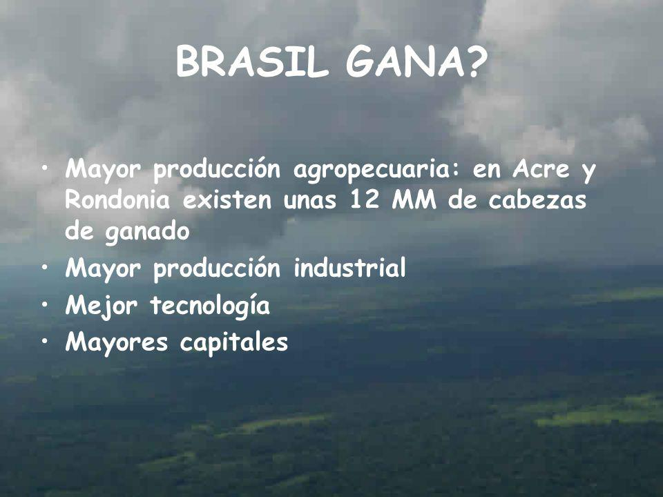 BRASIL GANA Mayor producción agropecuaria: en Acre y Rondonia existen unas 12 MM de cabezas de ganado.
