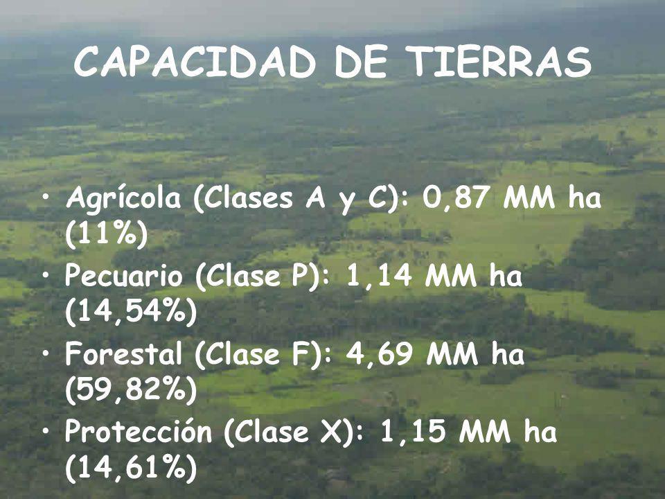 CAPACIDAD DE TIERRAS Agrícola (Clases A y C): 0,87 MM ha (11%)