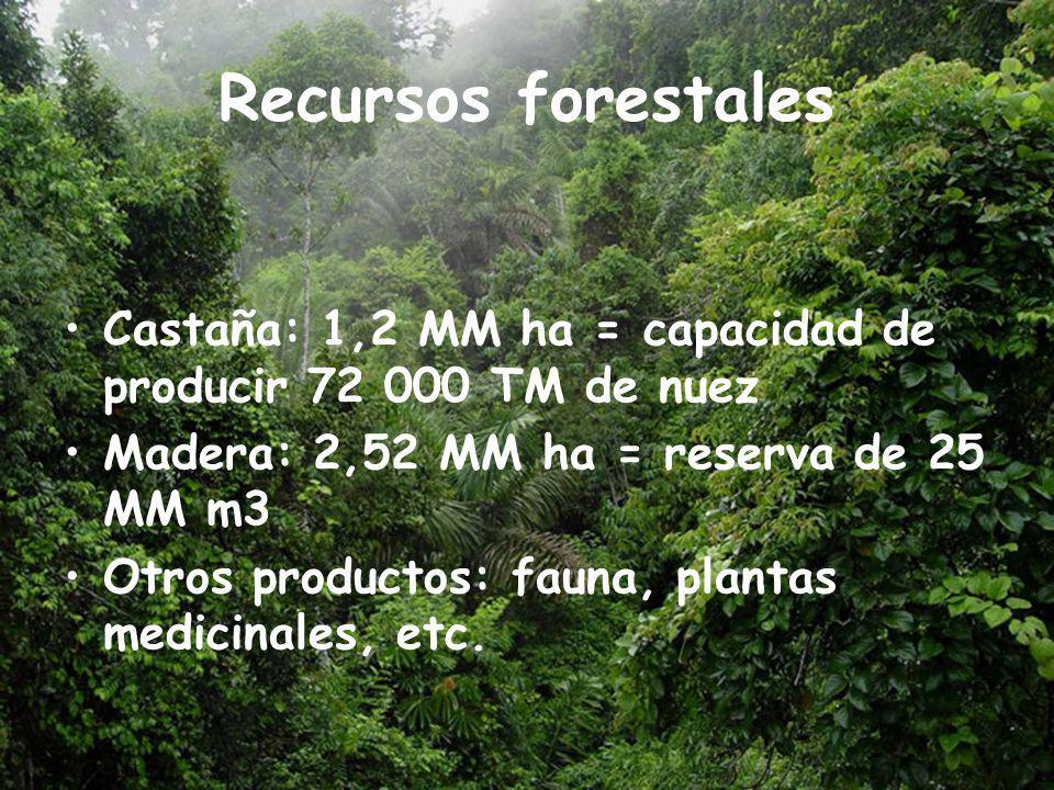 Recursos forestales Castaña: 1,2 MM ha = capacidad de producir 72 000 TM de nuez. Madera: 2,52 MM ha = reserva de 25 MM m3.