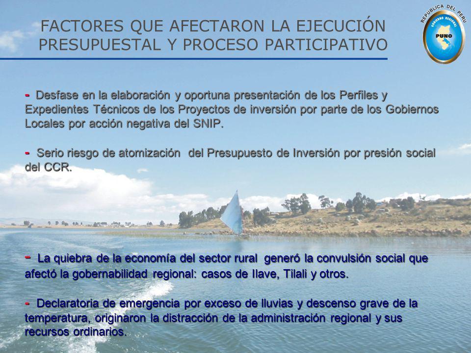 FACTORES QUE AFECTARON LA EJECUCIÓN PRESUPUESTAL Y PROCESO PARTICIPATIVO