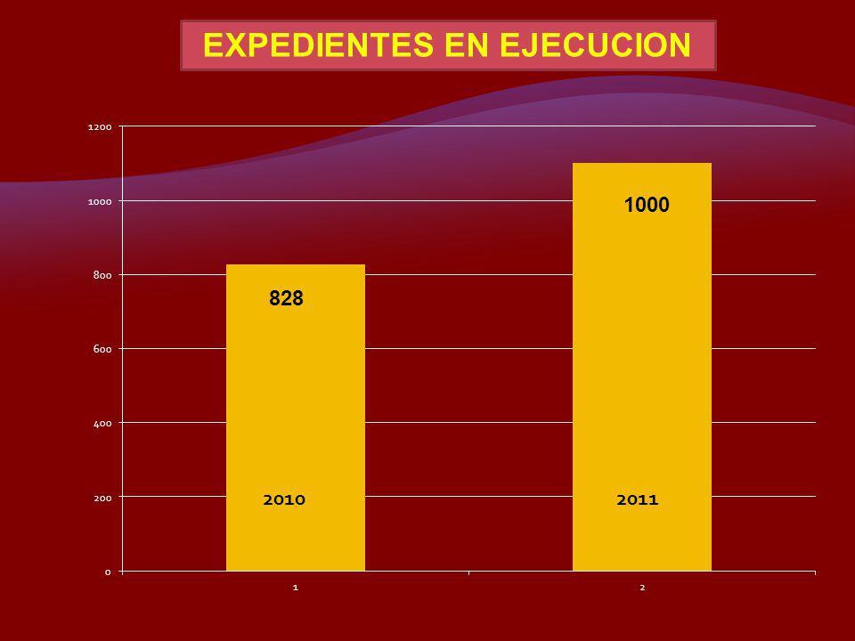 EXPEDIENTES EN EJECUCION
