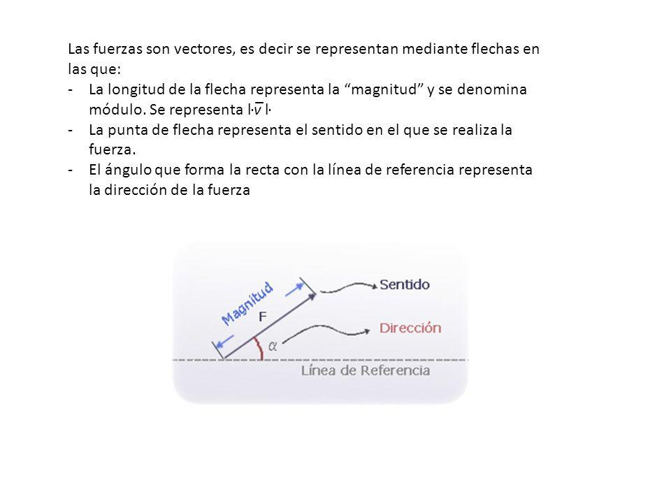 Las fuerzas son vectores, es decir se representan mediante flechas en las que: